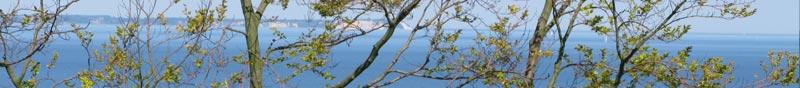 Ferienwohnung am Nationalpark Jasmund
